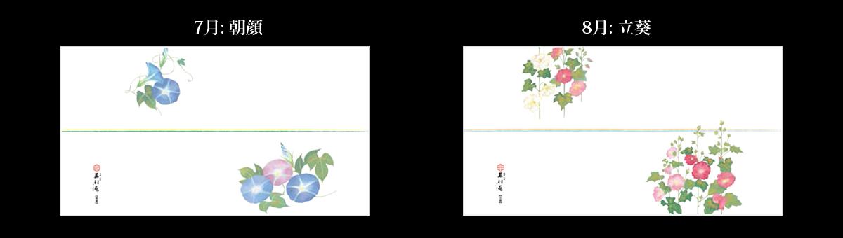 7月:朝顔、8月:立葵